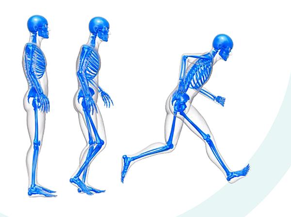 Δυναμική ανάλυση βάδισης